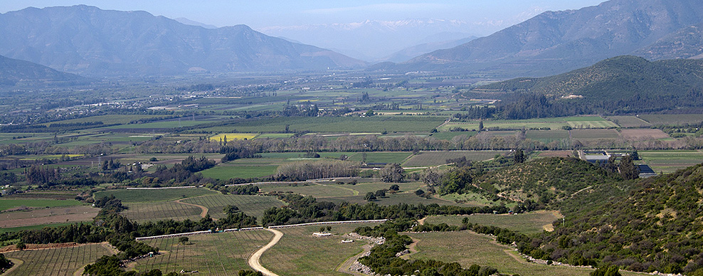 Colchagua Valley Courtesy of Casa Silva Winery