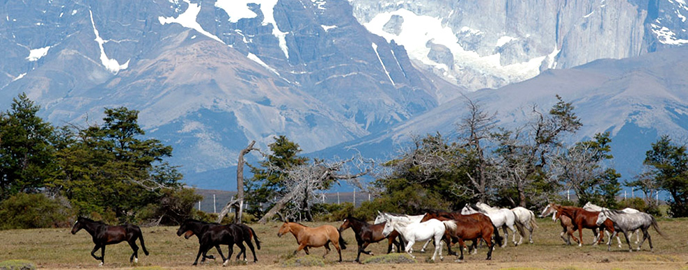 Patagonia - Courtesy of Cerro Guido